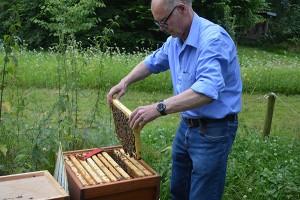 Dieter Anders öffnet einen Bienenstock.