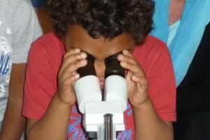 Forscher Lenny (5) hat im Stereoskop etwas entdeckt.