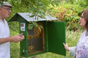 Franz Naber erläutert Kerstin Griese das Zusammenleben der Bienen.